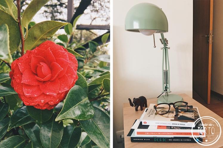 cotidiano-março-juliana_camelia - livros