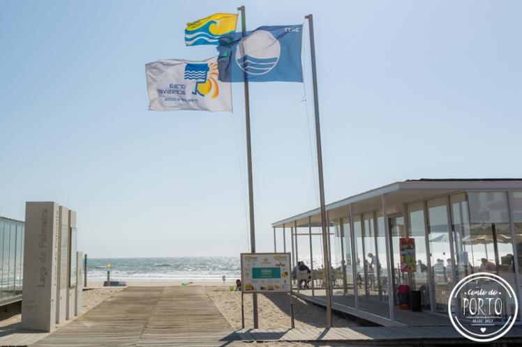 praia de leça da palmeira porto Portugal_1