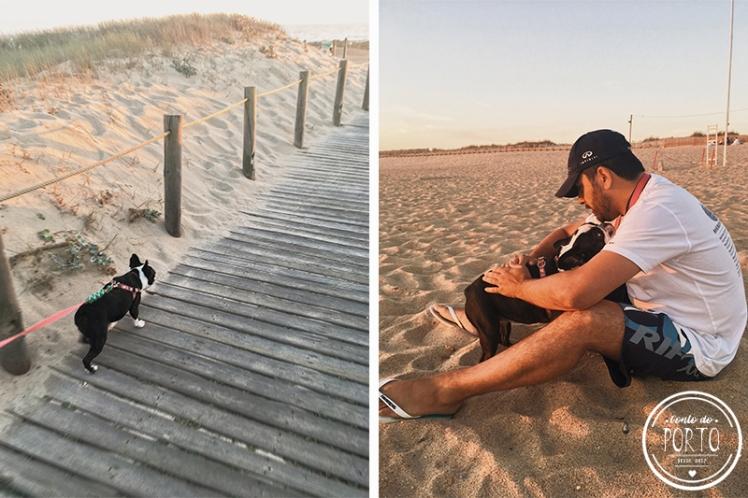 4_por-do-sol-praia-gaia (1)