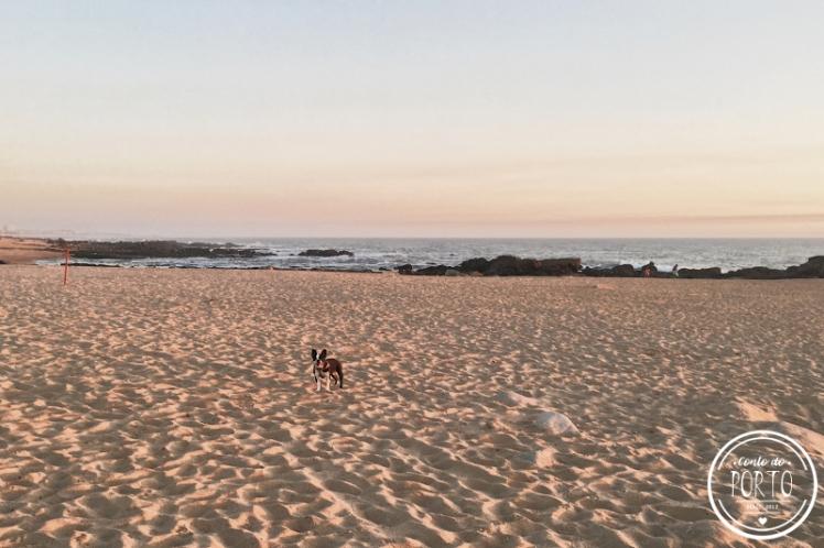 4_por-do-sol-praia-gaia (2)