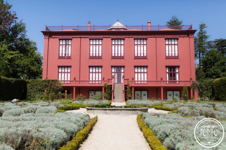 Jardim-botanico-porto-portugal (17)