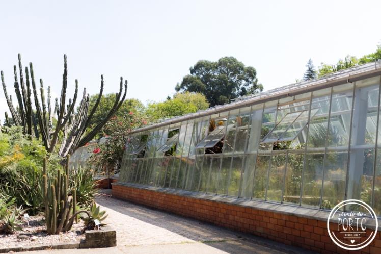 Jardim-botanico-porto-portugal (3)_2.jpg