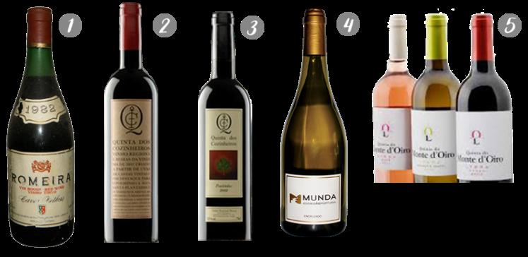 melhores vinhos portugueses para experiências únicas